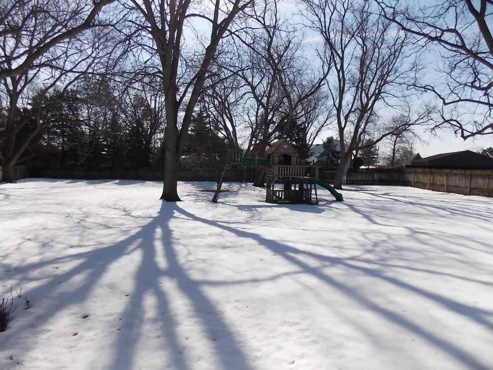 yard at 2829 Mackintosh Dr Janesville, WI